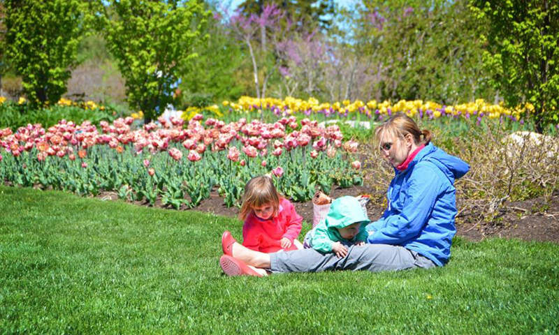 Family laying in the grass near flowers, Photo Courtesy of Coastal Maine Botanical Gardens