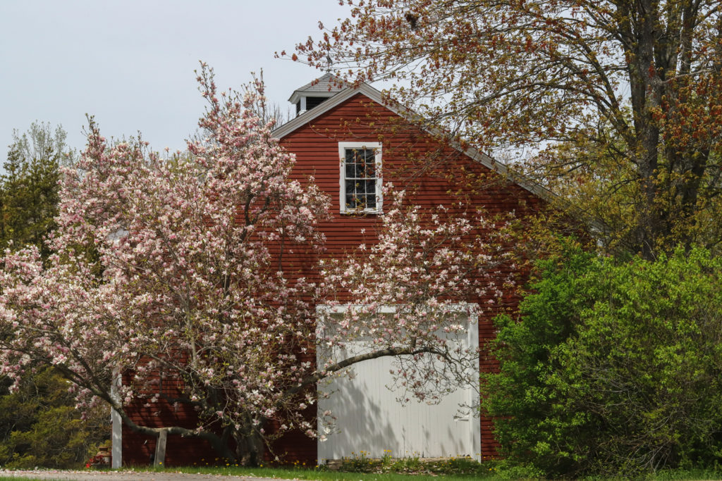 yarmouth downtown barn