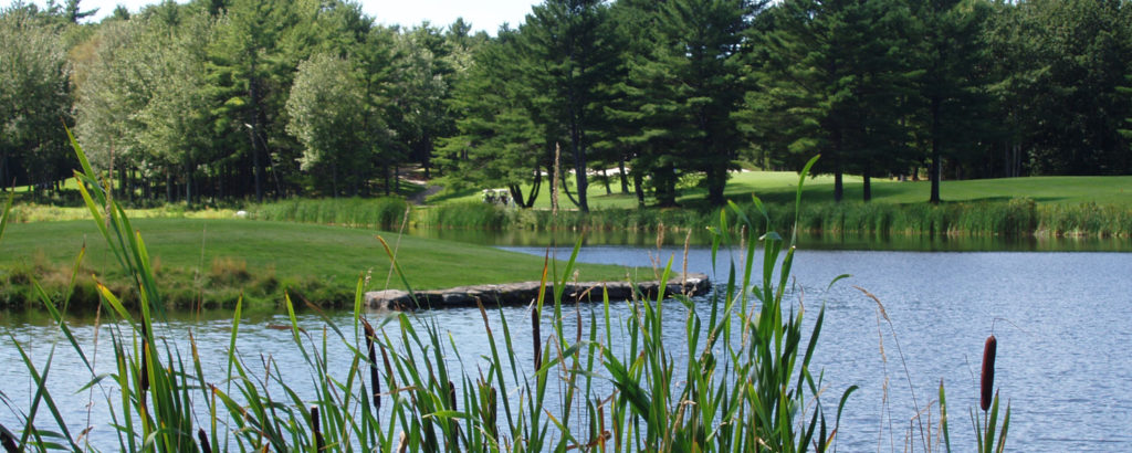 Golf Tournament Outdoor with Trees and Pond