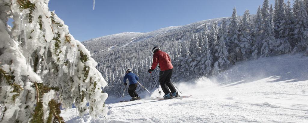 Winter Alpine Skiing