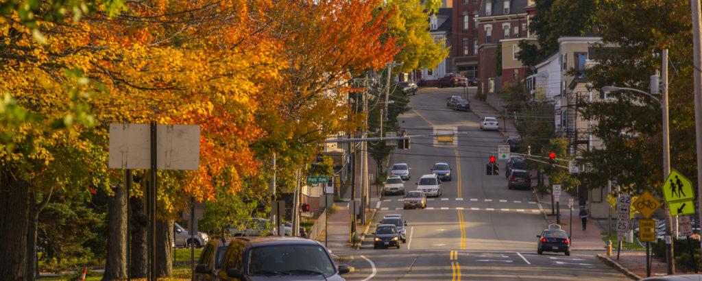 Fall Foliage in Portland, Photo Credit: CFW Photography