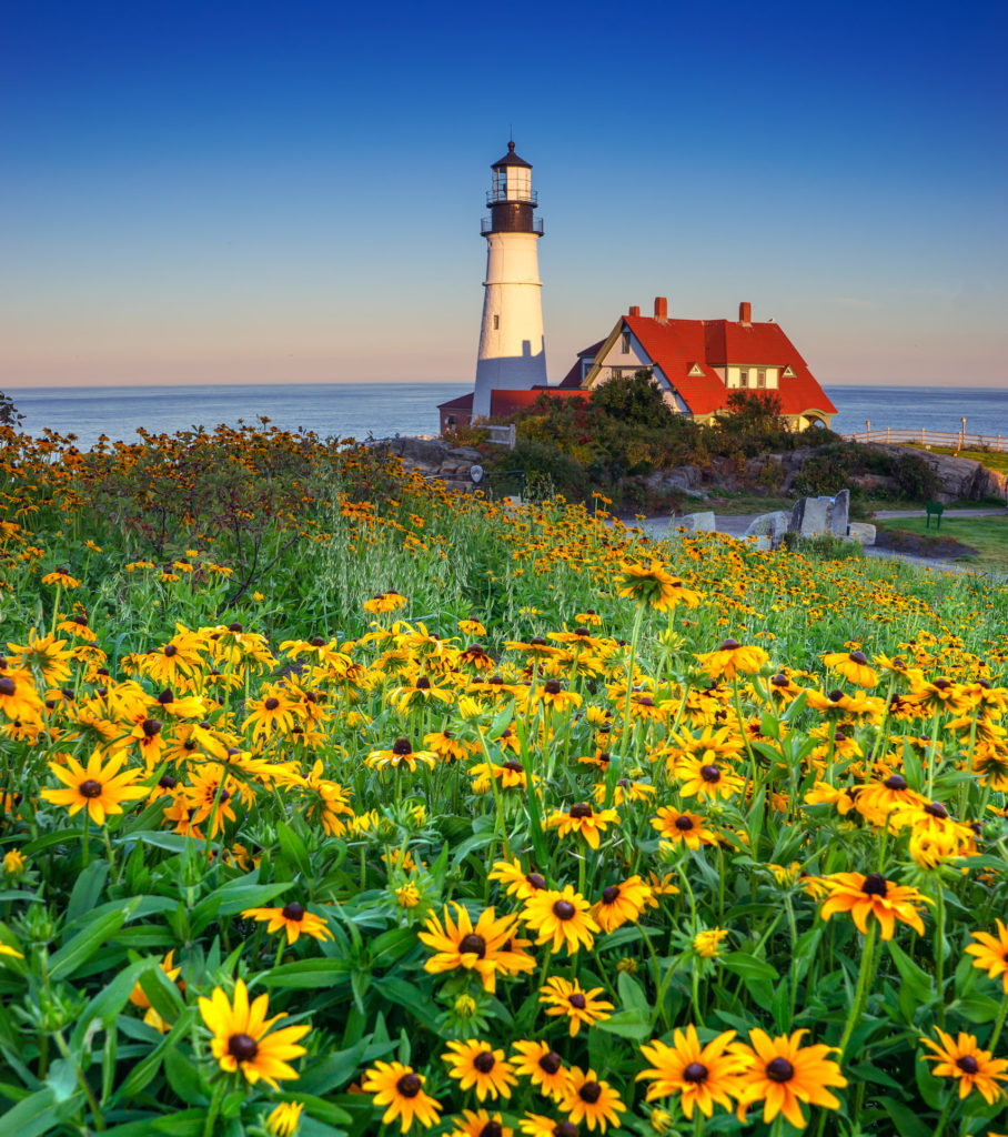 Portland Head Light Spring Flowers, Photo Credit: Kim Seng