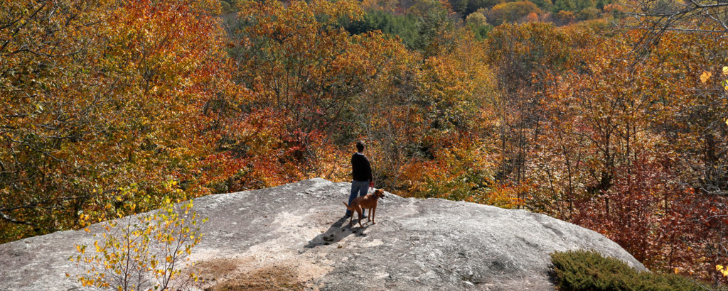 Bradbury Mountain with Dog, Photo Credit: Tim Greenway