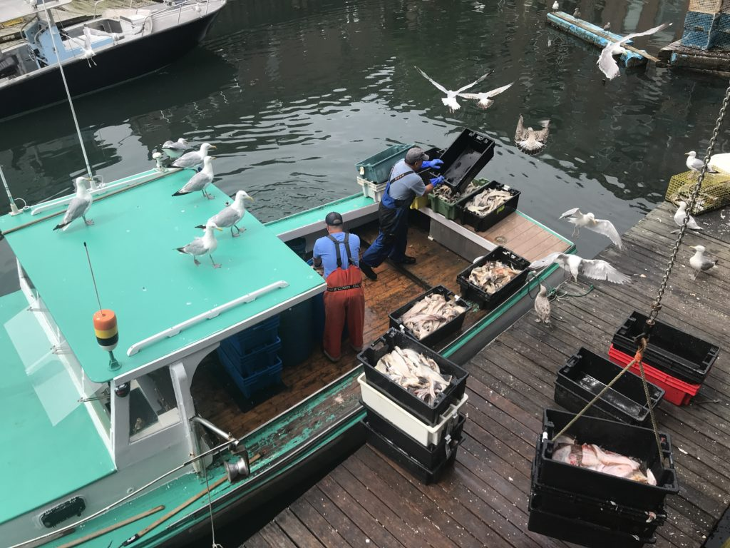 Lobster Boat on Dock in Old Port with Bait, Photo Courtesy of Visit Portland / GLP Films