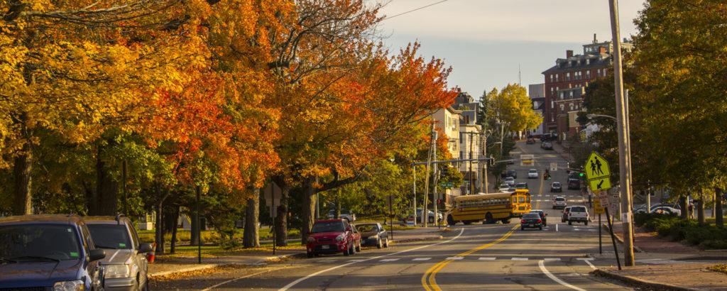 Fall Foliage, Photo Credit: CFW Photography