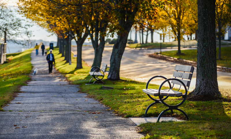 Eastern Promenade Walk with Bench in Fall, Photo Credit: Corey Templeton