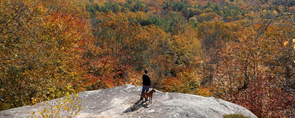 Bradbury Mountain, Photo Credit: Tim Greenway
