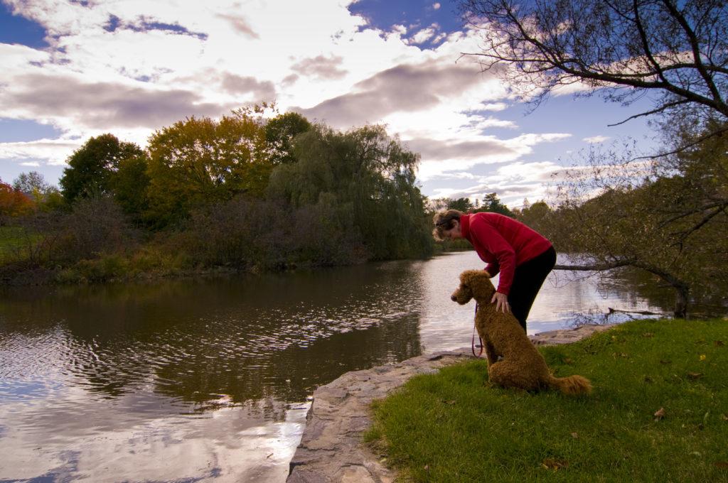 Walking with Dog Through Fall Foliage Near Pond, Photo Credit: CFW Photography