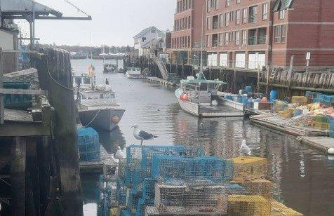 Working Waterfront, Photo Credit: Daniel Seddiqui / Piece of Your City Tour
