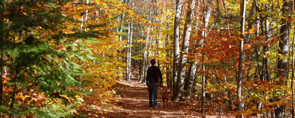 Hiking at Bradbury Mountain in Fall. Photo Courtesy of Visit Freeport.