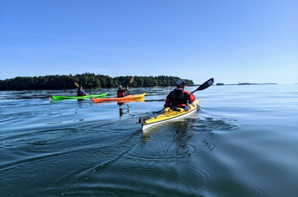 Half-Day on Casco Bay Tour - Photo Credit: Portland Paddle